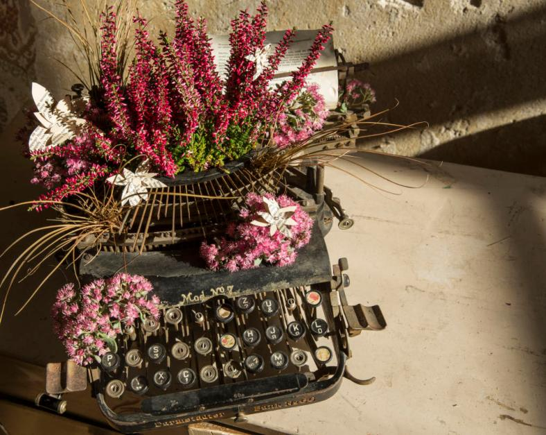 Flowers growing in a typewriter
