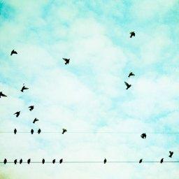 10 Short Stories challenge – day 6