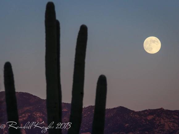moon-Harvest-9-18-2013-Randall-Kayfes-Arizona-e1379558039113