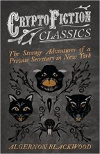 THE STRANGE ADVENTURES OF A PRIVATE SECRETARY IN NEW YORK by Algernon Blackwood (1869–1951)