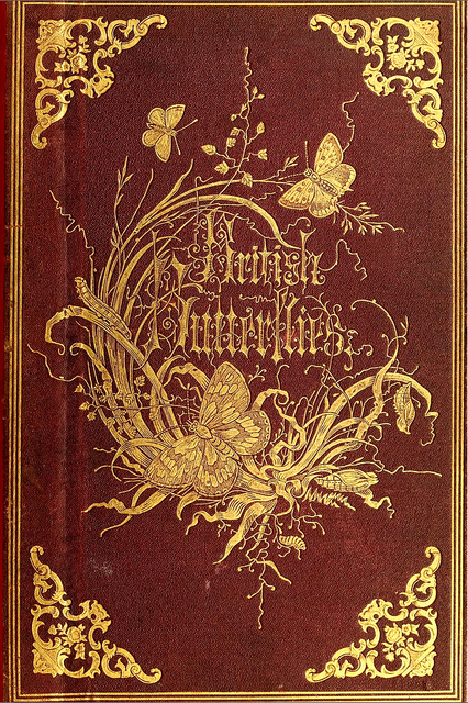 Book Cover of British Butterflies  archive.org/stream/generaspeciesofb00hump#page/n0/mode/2up