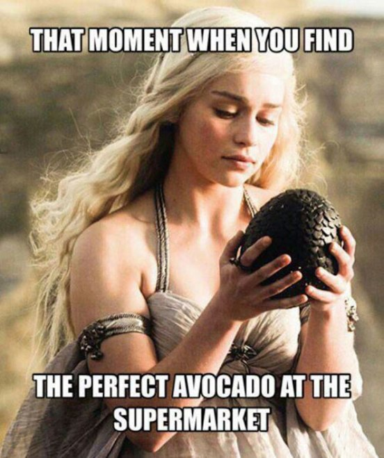 funny-game-of-thrones-memes-6__605