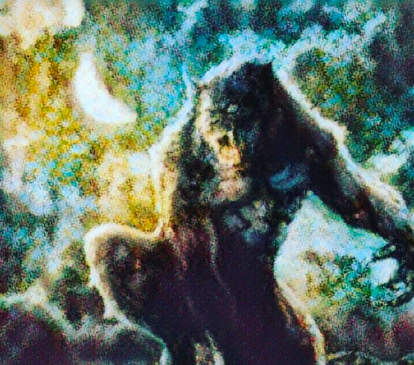 Werewolf. 10 Magnificently Scary Monsters