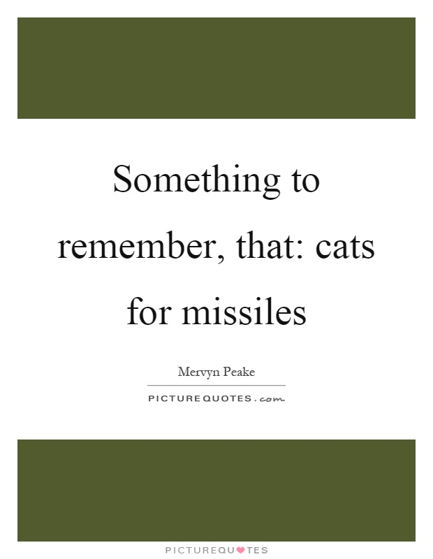 something-to-remember-that-cats-for-missiles-quote-1