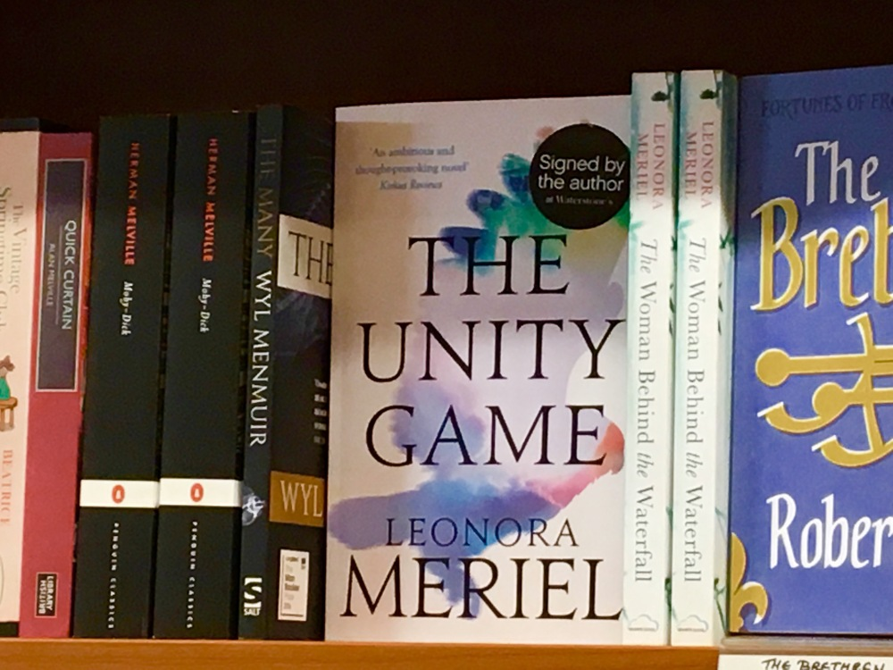 The Unity Game by Leonora Meriel